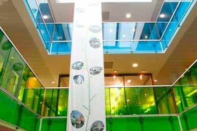 Glasdekoration mit transparenter Farbfolie